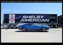 1969 shelby boss 302 shelby american